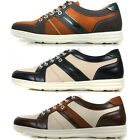 New Stylish Lace up Fashion Footwear Casual Sneakers Mens Shoes