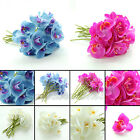 DIY 6-12pcs Best Butterfly Orchid Touch Latex Flower Wedding Bouquets Home Decor