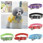 Collar Diamante Crystal Band Rhinestone PU Leather Neck Strap Buckle Pet Dog Cat