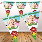 Personalised Farm Animals Happy Birthday Party PHOTO Flag Banner Bunting N53