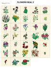 real FLOWERS 2. CARD machine embroidery designs jef files 4 janome 300e