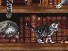 Timeless Treasures Cats in the Library Poplin Quilting Fabric (C2863-Library-M)