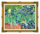 Irises Vincent van Gogh Wild Flowers Framed Painting Reproduction Art Picture