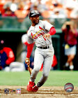 Ozzie Smith St. Louis Cardinals MLB Action Photo BC036 (Select Size)