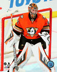 Frederik Andersen Anaheim Ducks 2015-2016 NHL Action Photo SK157 (Select Size)