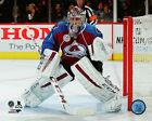 Semyon Varlamov Colorado Avalanche 2015-2016 NHL Action Photo SI180