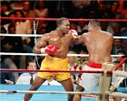 Evander Holyfield Boxing Action Photo NT215 (Select Size)