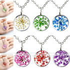 Fashion Resin Dyeing Dried Flower Cluster Pendant Chain Necklace Women Girl Gift