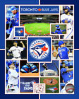 Toronto Blue Jays 2015 MLB Team Composite Photo SG121 (Select Size)