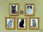 ONE DOLLS HOUSE MINIATURE CAT PICTURE Choice of Type WOOD FRAME Handmade 6x4.5cm