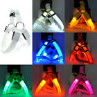 Pet Dog Safety Chest Strap Harness LED Light Flashing USB Rechargeable XS/S/M/XL