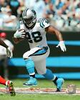 Jonathan Stewart Carolina Panthers 2016 NFL Action Photo TJ035 (Select Size)