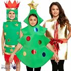 Kids Child Christmas Cracker Present Tree Gift Nativity Play Fancy Dress Costume