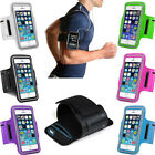 Sport Running Jogging Gym Arm Band Armband Phone Holder for iPhone 6/6S Plus