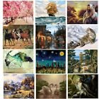 16X20'' Acrylic Paint By Number Kit DIY Oil Painting On Canvas Decor No Frame