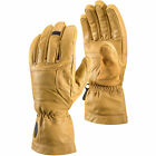 BLACK DIAMOND Men's Patrol Gloves