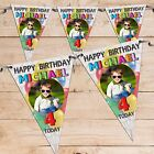 Personalised 1st 5th 30th 40th Birthday Party Flag Banner Bunting N72 ANY AGE