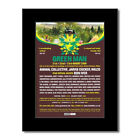 GREEN MAN FESTIVAL - 2009 - Animal Collective Matted...