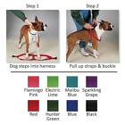 Assorted Color Dog Harness Bulk Pack Shelter Vet Rescue Choose Size & Quantity