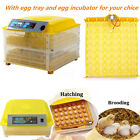 96 Digital Eggs Incubator Hatcher Temperature Control Automatic Turning Chicken