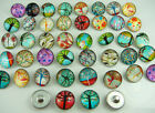 Mix diy charm Chunks series for Snap Button Chunks charm Wholesale 18mm p29