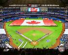 Rogers Centre Toronto Blue Jays 2017 MLB Stadium Photo UF189 (Select Size)