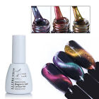 Chameleon Soak Off UV Gel Polish Nail Art 3D Cat Eye Magnet Manicure BORN PRETTY