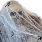 Home Bar Party Festival Decoration Stretchy Spider Web Cobweb Prop for Halloween
