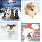 Pack of 10 Charity Christmas Cards - Springer Spaniel Sitting Dog Designs