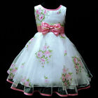 Pinks Christmas Wedding Party Bridesmaid Flower Girls Dresses AGE 2,3,4,6,8,10Y