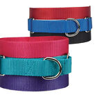 Dog Puppy Martingale Nylon Collar - Guardian Gear - 6 Colors 3 Sizes