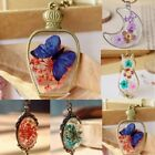 Natural Real Dried Flower Cat Butterfly Glass Pendant Necklace Women Jewelry Hot