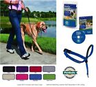 blue colored dog - PetSafe GENTLE LEADER HEAD COLLAR w DVD Dog Training No Pull - All Sizes/Colors