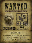 DOG WANTED POSTER FUNNY COCKAPOO:METAL SIGN :3 SIZES TO CHOOSE FROM