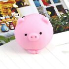 Soft Mini Piggy Ball Squishy Squeeze Healing Toys Adults Children Venting Toy