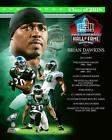 Brian Dawkins Philadelphia Eagles NFL Hall of Fame Photo VC056 (Select Size) $23.99 USD on eBay