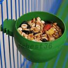 Mini Bird Parrot Food Water Bowl Feeder Plastic Pigeons Cage Cup Feeding Holder