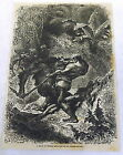 1878 magazine engraving~ A DYAK OF BORNEO ATTACKED BY AN ORANG-OUTANG orangutan