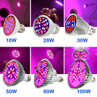 10-120W LED Grow Light Bulb E27 Full Spectrum Indoor Veg Bloom Plant Lamp 4/8pcs