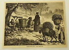 1881 magazine engraving ~ROSE-DISTILLING~ workers collect water and carry roses