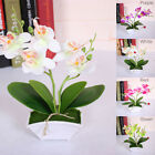 Artificial Butterfly Orchid Flower Plants In Pot Fake Home Wedding Party Office