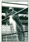 Mr Pete Smith - Vintage photo