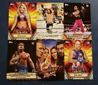 2019 Topps WWE Summerslam Mr. Greatest Matches Moments Poster You Pick