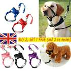 Dog Muzzle Strap Halti Head Stops Nose Collar Reigns Pet Pulling Halter UK