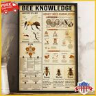FREESHIP Bee Knowledge Anatomy of a bee Honey Knowledge Wall Decor Poster US