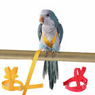 Flying Training Band Parrot Bird Harness Cockatiel Lead Leash 5 Sizes Outdoor