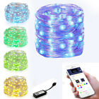 LED Fairy String Light Copper Wire USB RGB Smart WiFi timer Lamp Christmas Home