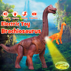 US Dinosaur Toys Motor Electric Cry Lamplight Can Laying Egg Christmas Gift Kids