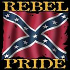 "Dixie Southern ""REBEL PRIDE..KEEP IT FLYING"" 50/50 Gildan/Jerzees T SHIRT"