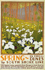 SPRING IN THE DUNES ILLINOIS LANDSCAPE FLOWER TRAVEL USA VINTAGE POSTER REPRO